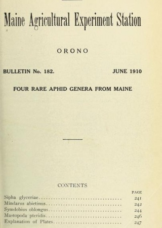 Four rare aphid genera from Maine