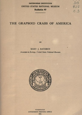The grapsoid crabs of America,  by Mary J. Rathbun